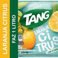 TANG LARANJA CITRUS 25G